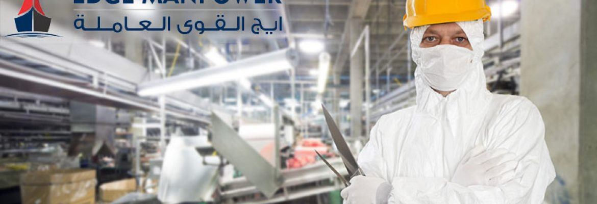 Overseas Food Processing Industry Recruitment Services